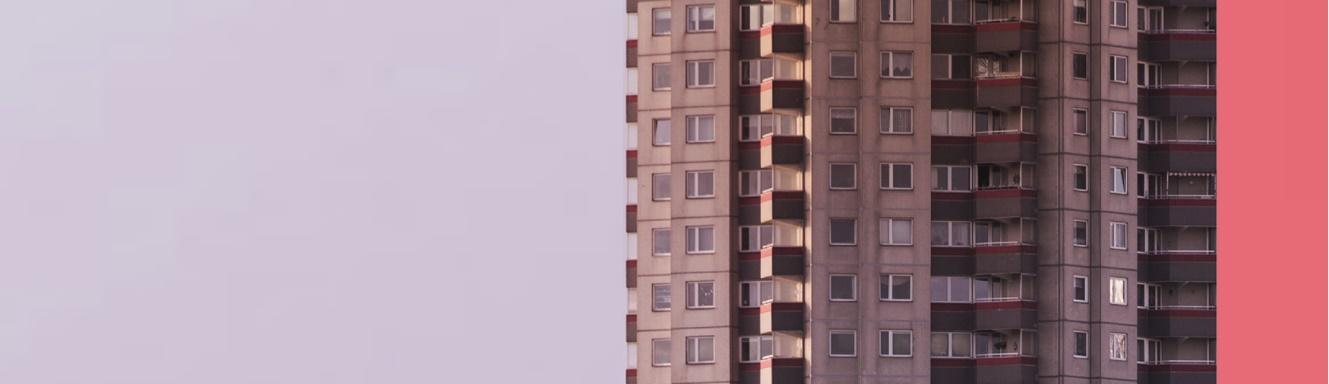 Betonia | Beata Chomątowska
