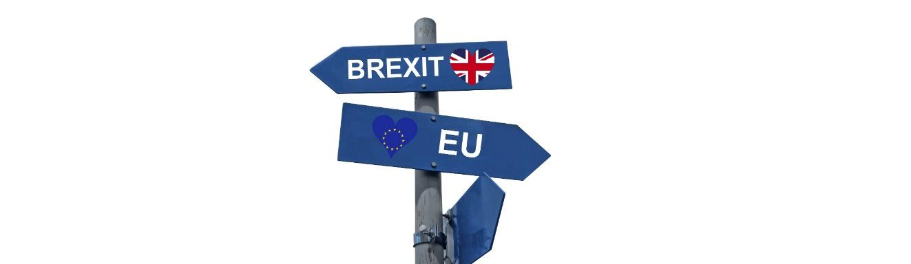 Dzień po Brexicie. Jakiej lewicy potrzebujemy?